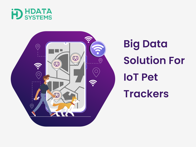 Big Data Solution For IoT Pet Trackers