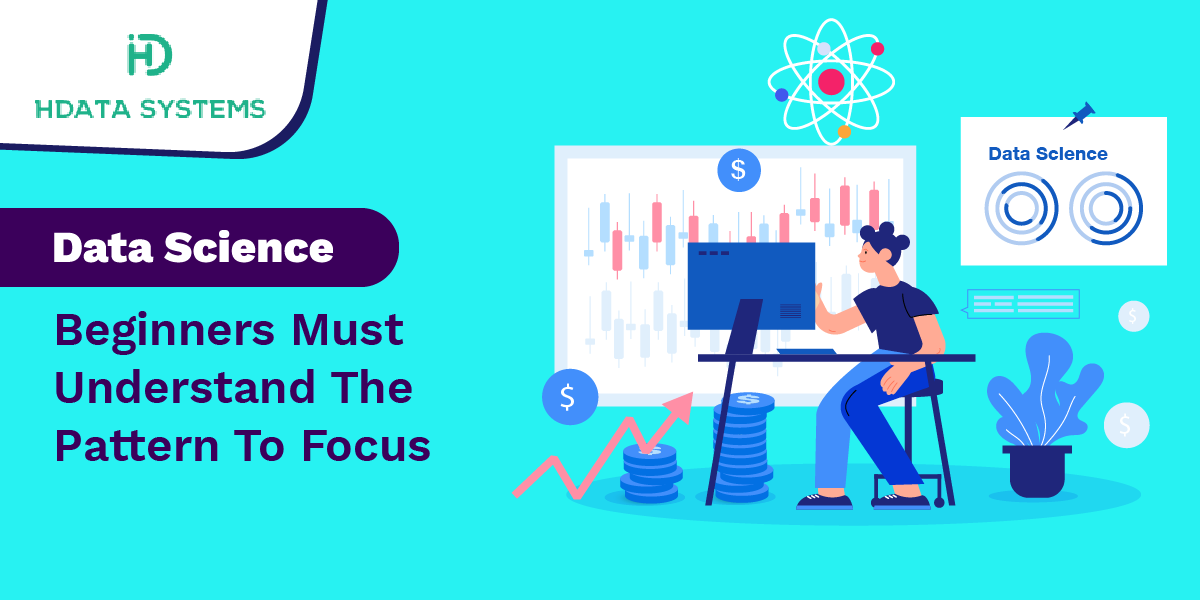 data science beginners must understand the pattern to focus