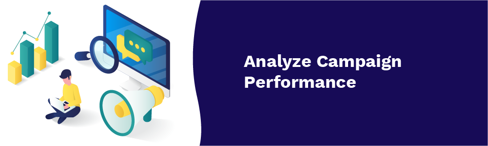 analyze campaign performance